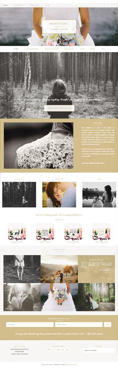 Monfort More Homepage Widget Options