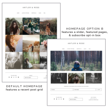 Antler and Rose homepage options