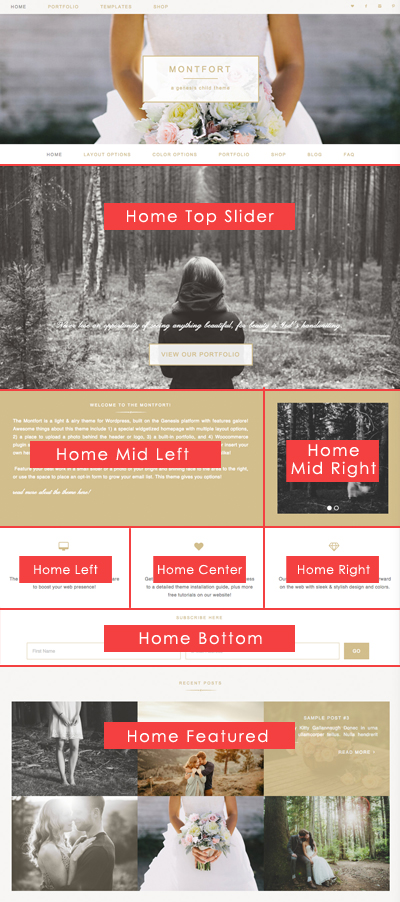 Montfort Homepage Widget Guide
