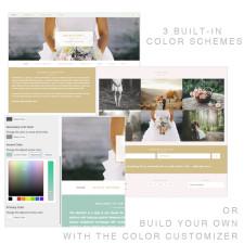 Montfort Color Options