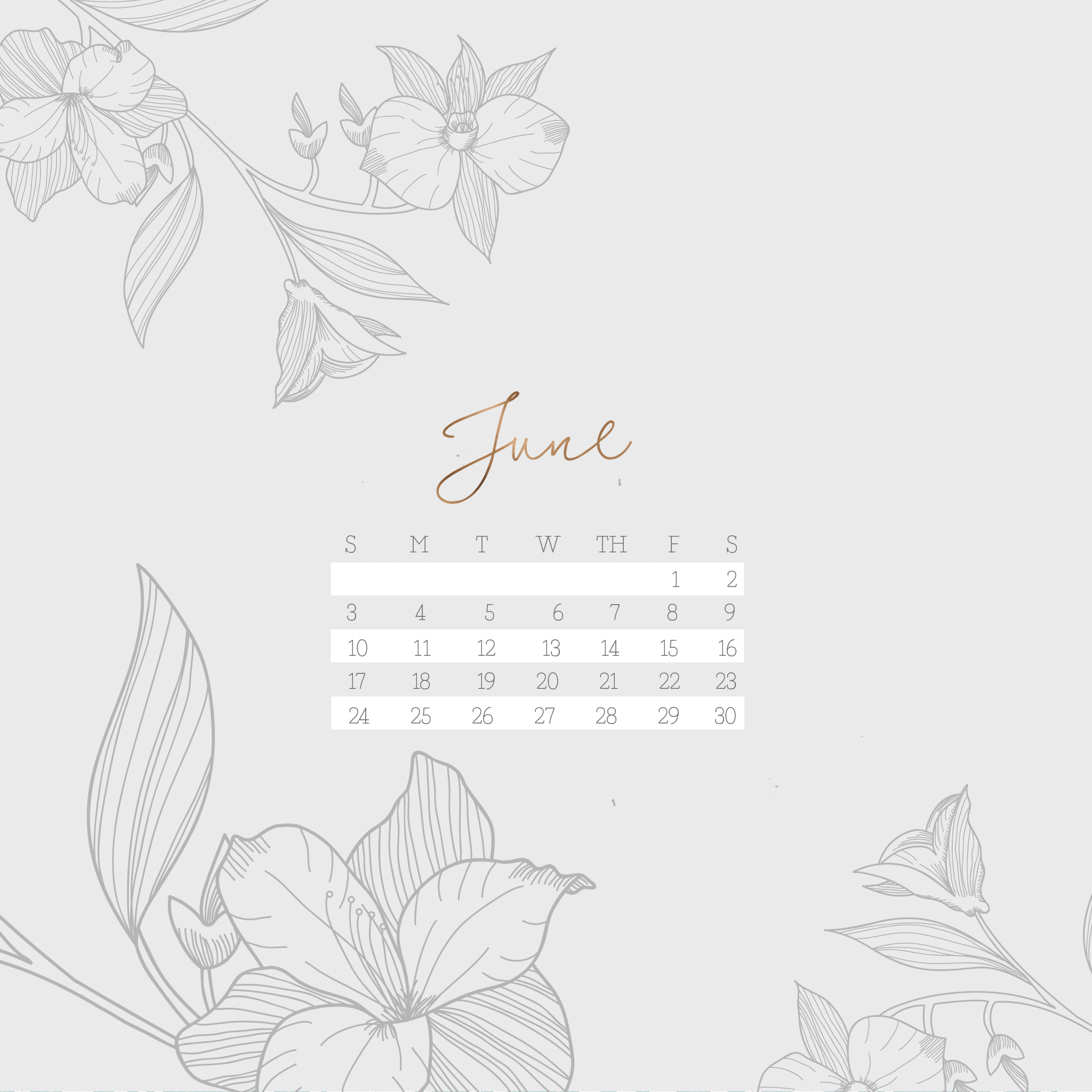 calendar wallpaper for june 2018