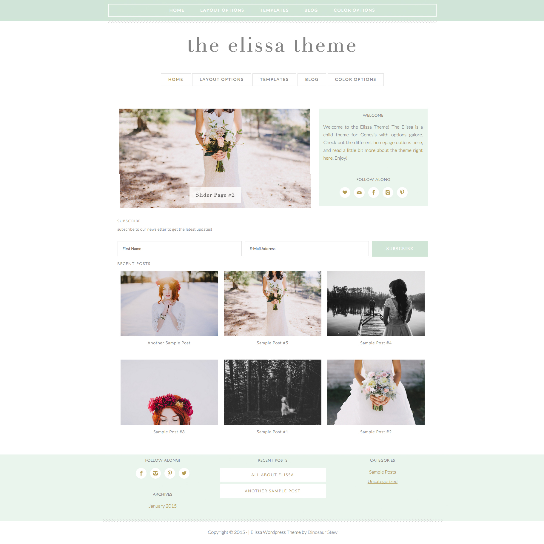 Elissa Wordpress Theme