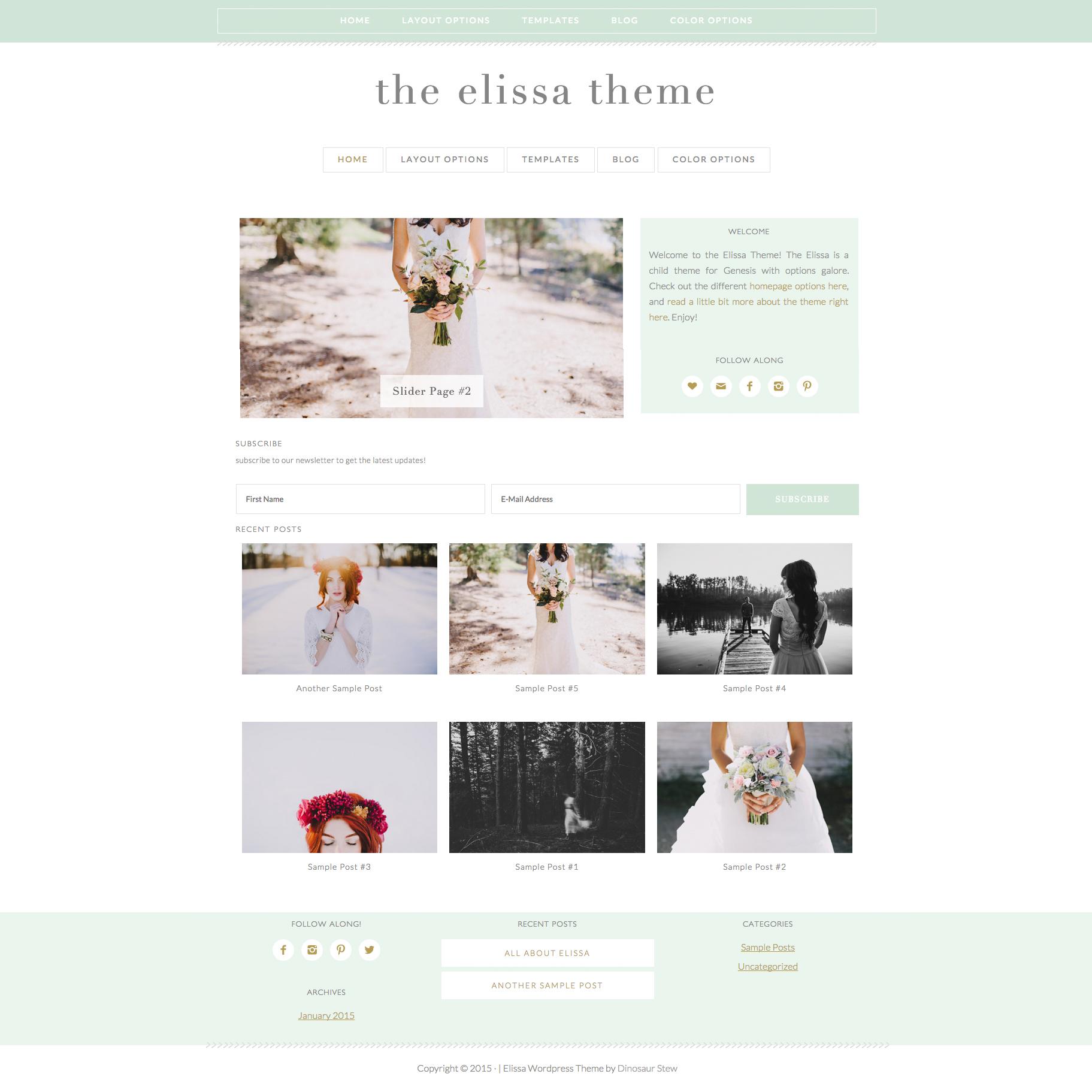 Elissa Wordpress Theme