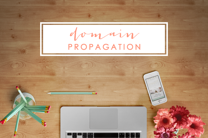 What is Domain Propagation?