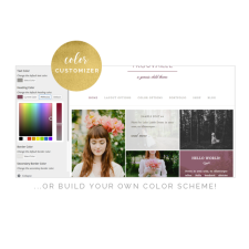 Trouvaille Theme Color Customizer