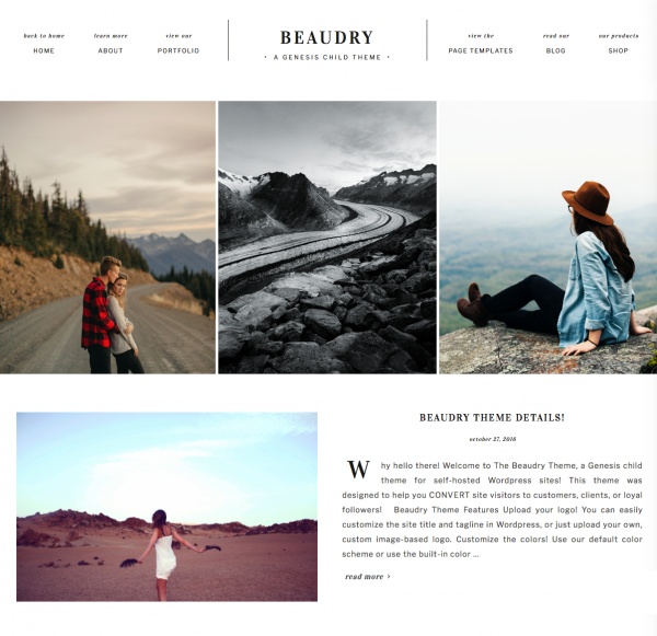 Wordpress Theme For Photographers